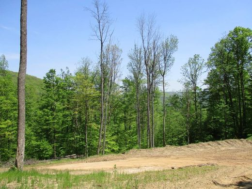 Land in Allegany, Cattaraugus County