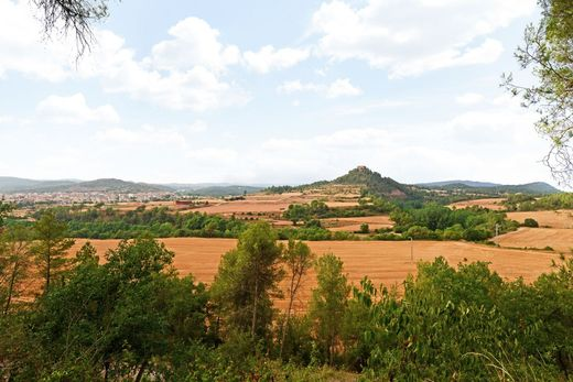 Land in Sallent, Province of Barcelona